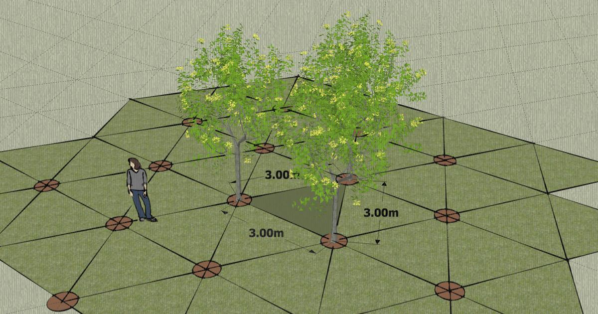 Fórmula de Plantación a Tresbolillo :: Permacultura en México V3.9
